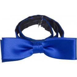 Kobalt blauw vlinderdas